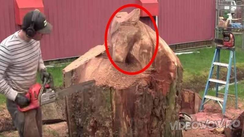 A observat în curtea vecinului un TRUNCHI mare lăsat după tăierea unui copac - Ce a creat din el i-a făcut pe toţi vecini să moară de invidie... Splendid