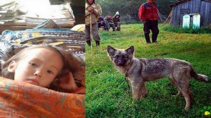 A supravieţuit 12 zile fără mâncare şi fără apă în taigaua Rusească toate datorită câinelui ei: Când ai să vezi cum au găsit-o salvatorii... pare un MIRACOL, dar este adevărat!