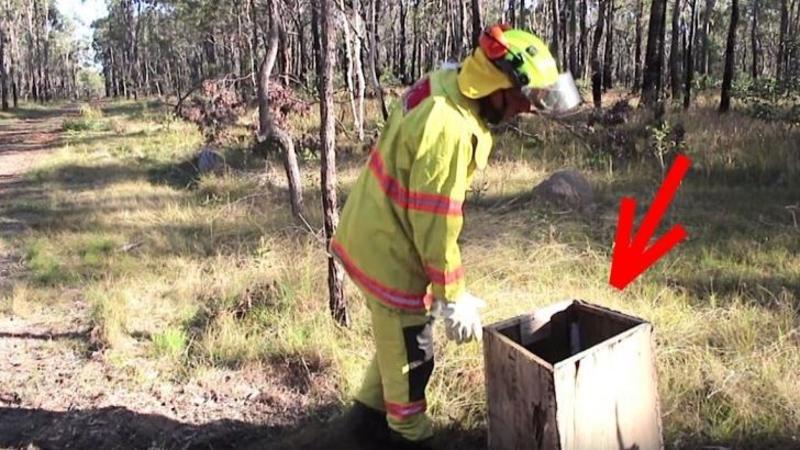 Un pompier găseşte în mijlocul pădurii un biet căţel ABANDONAT... şi într-o clipită viaţa lui se schimbă pentru totdeauna! Ce a urmat... este cu adevărat emoţionant!