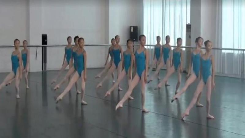 Au între 6 şi 10 anişori, dar să le vezi pe aceste micuţe BALERINE dansând pe scenă este o adevărată SPLENDOARE! Sincronizarea lor m-a dat pe spate... WOW