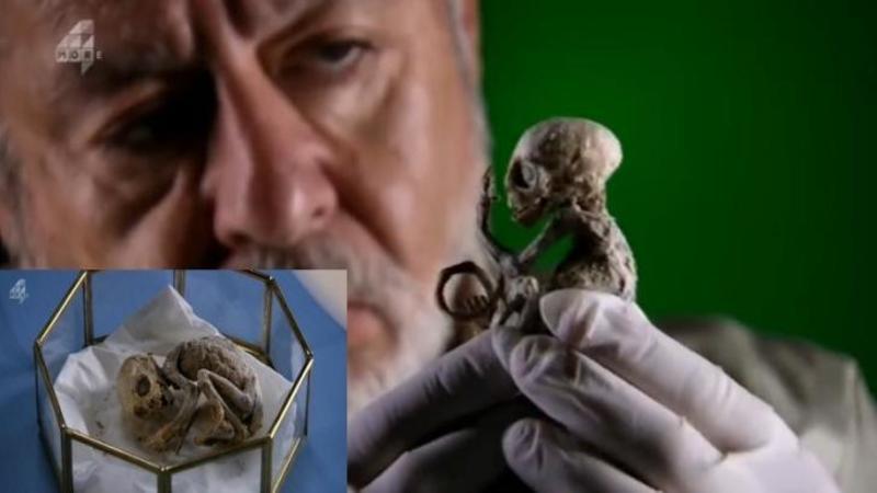 Misteriosul EXTRATERESTRU care i-a lăsat pe cercetători în beznă! Timp de 10 ani a fost studiat fără nici un fel de concluzie! Să fie oare adevărat?