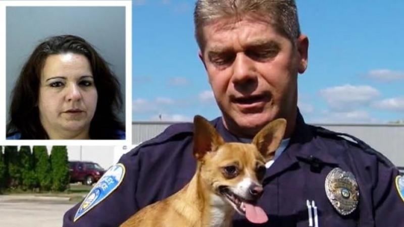 O femeie a încercat să OMOARE acest micuţ suflet nevinovat... Dar ce pedeapsă a primit în schimb de la ofiţerul de poliţie care a venit în ajutorul câinelui... Am aplaudat cu lacrimi în ochi gestul lui!
