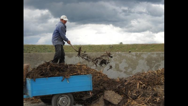 Stiai ca exista o tehnologie revolutionara pentru fertilizarea solului in mod natural ? Iata cum se face.