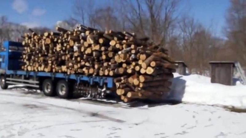 Uită-te puţin ce se întâmplă cu acest CAMION plin cu lemne... nu îţi va vine să crezi în câte secunde poate descărca şoferul grămada... WOW, ăsta da talent!
