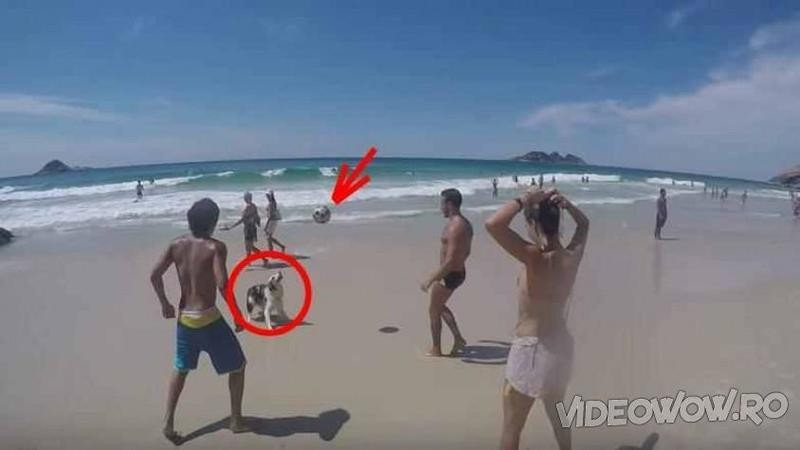 Cei trei tineri se jucau cu mingea pe PLAJA când ceva le întrerupe distracţia! Fi atent puţin la câinele de lângă ei, nu mi-a venit să cred ce face în mijlocul lor.... WOW, cu adevărat talentat micuţul patruped!