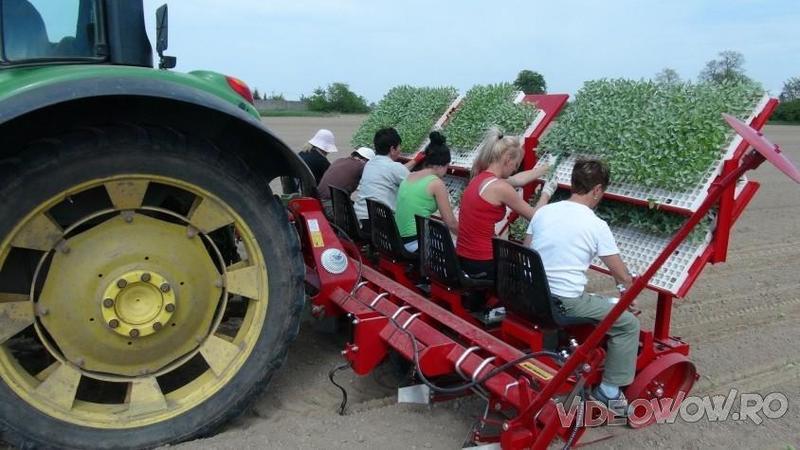 Pare o nebunie să vezi oamenii stând în SPATELE unui tractor pe SCAUN, dar ce se întâmplă defapt aici este o cu totul altă poveste! Uite cum arată un asemenea utilaj de plantat de ultimă generaţie... WOW