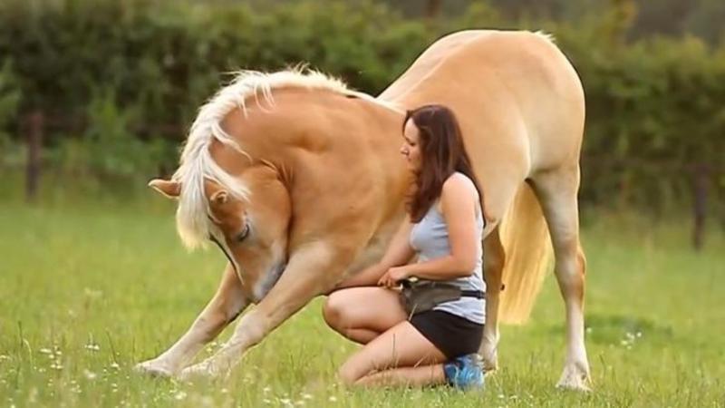 Incredibila legătură dintre un cal şi stăpâna acestuia: Un video UIMITOR şi surprinzător care te va emoţiona profund! Ce fac cei doi este de o SUPERBITATE ieşită din comun