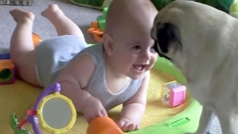 Câinele se apropie de bebeluş şi îl face să râdă COPIOS, dar ce gest face apoi a lăsat-o până şi pe mămică fără cuvinte! Este adorabil VICLENIA lui...