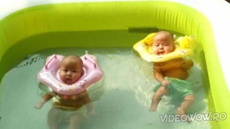 Işi aruncă grasuneii în piscina pentru copii cu colacii pe cap: Ce scene de relaxare şi fericire surprinde mămica... te va face să mori de invidie! Eu unul mor să mă uit la ei cum se bălăcesc...