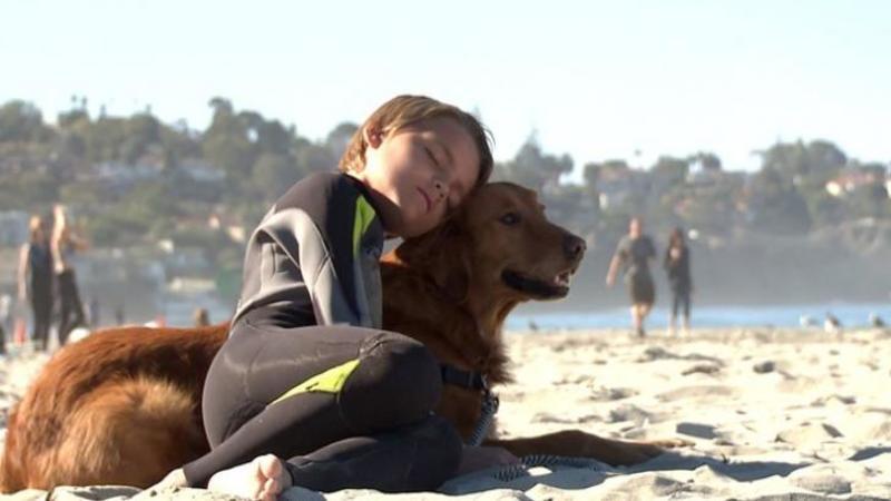 Acest câine s-a născut pentru un singur scop în viaţa şi ce vom învăţa de la acest micuţ suflet nu vom învăţa de la nimeni! Incredibil ce se poate întâmpla atunci când te aştepţi cel mai puţin...