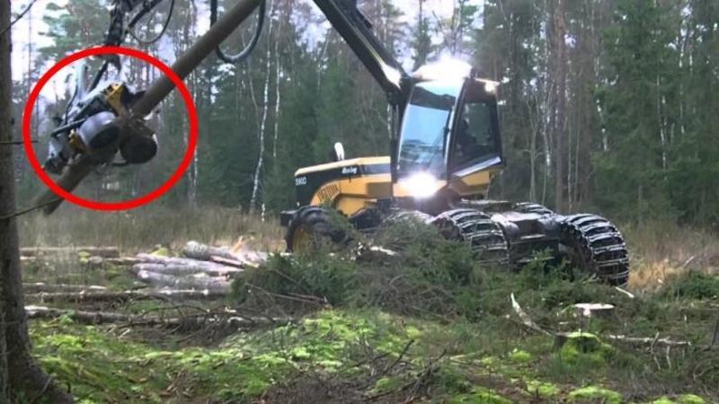 Fi atent la maşinăria asta ce poate să facă cu un POM! Dacă românii ar fi avut asemenea tehnologie pe mână... demult nu ar mai fi existat păduri la noi în România!
