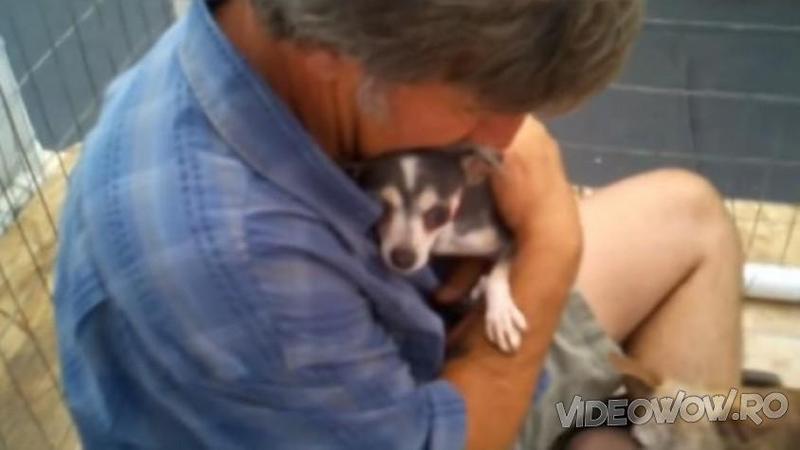 Acest biet câine nu a mai fost mângâiat sau atins de vreun OM de 3 ani... până când cineva se decide să îl strângă în braţe: Ce se întâmplă imediat după... m-a făcut să plâng! Emoţionant