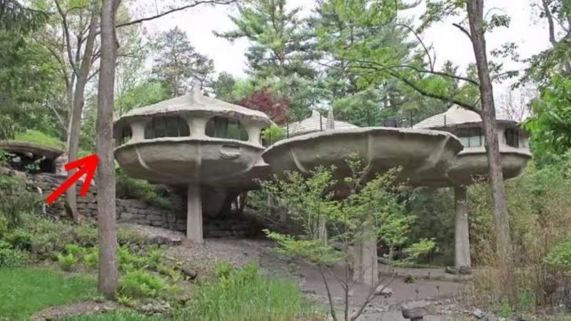 De la depărtare pare o casă abandonată în pădure, dar nici prin cap nu o să îţi treacă cum arată interiorul... aşteaptă să fi minunat de designul ei FASCINANT: Cu siguranţă vei vrea să locuieşti în ea
