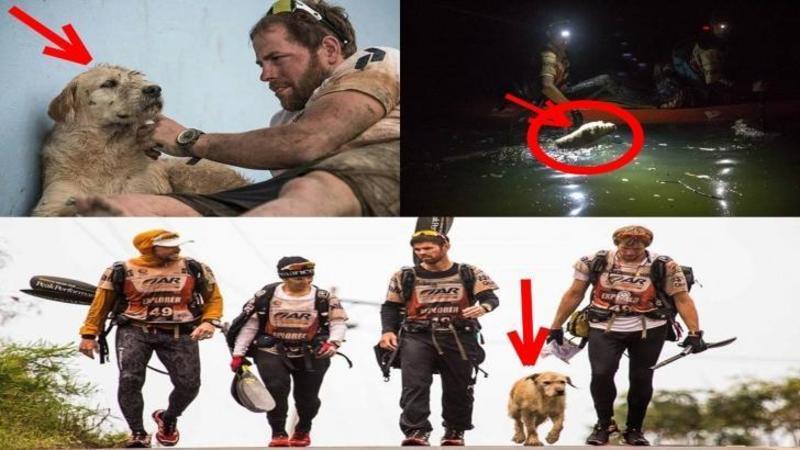 Un om a hrănit acest câine în timp ce făcea ocolul pământului pe jos şi de atunci nu a mai vrut să îl părăsească niciodată: De cât devotament, ambiţie şi recunoştiinţă a dat dovadă acest suflet este de necrezut... o poveste emoţionantă care îţi va atinge sufletul