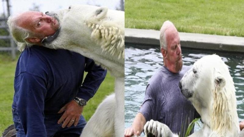 Când am văzut cum URSUL polar îl muşcă de gât mi-a stat inima în loc, nu mi-a venit să cred ce se întâmplă... dar după câteva secunde am rămas fără cuvinte: Ce legătură are acest om cu un urs polar sălbatic întrece orice imaginaţie
