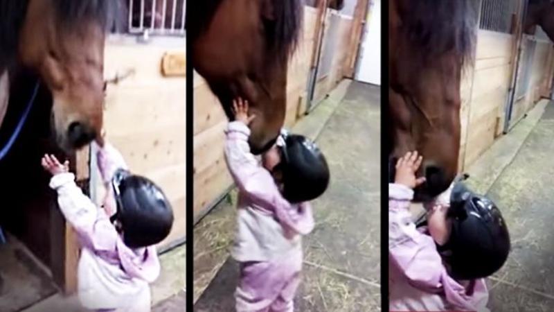 Mamica îi spune să îşi i-a la revedere de la căluţ: Ce face micuţa de o şchioapă îţi va topi inima negreşit!
