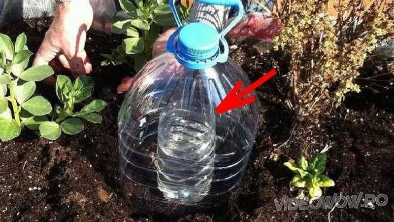 Tehnica de IRIGAT care îţi va economisii o grămadă de timp şi apă! Uite cât de simplă şi eficientă este această idee! De la primăvară grădina mea va arăta complet diferit... Genial