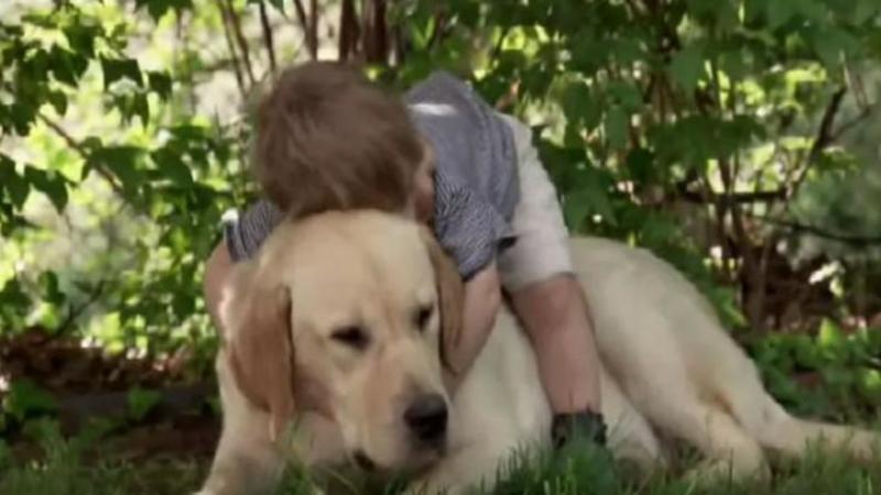 Micuţul se aşează pe câine şi începe să îl îmbrăţişeze: Ce se întâmplă după câteva secunde... nu mi-a venit să cred, este emoţionant legătura dintre cei doi!
